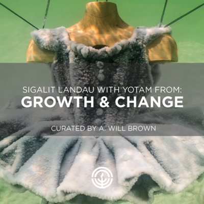 Growth & Change: Gallery Open House