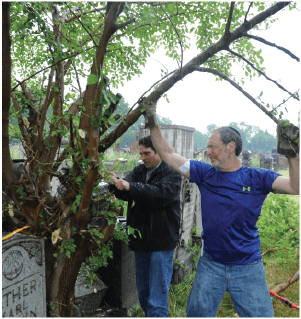 Cemetery Clean-up