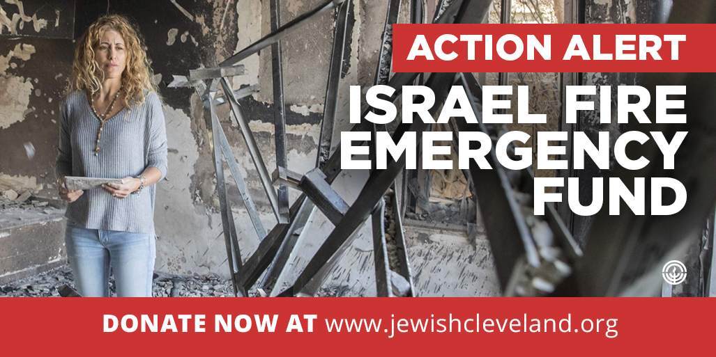 Donate Now: Israel Fire Emergency Fund